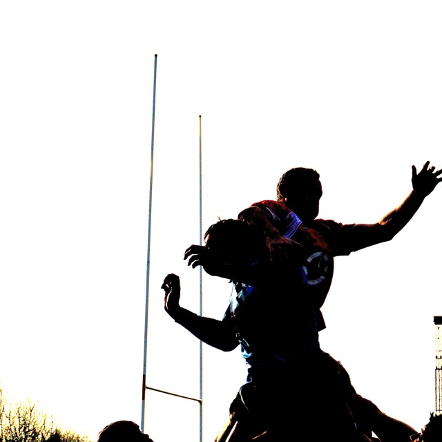 """Lineout"" stock image"