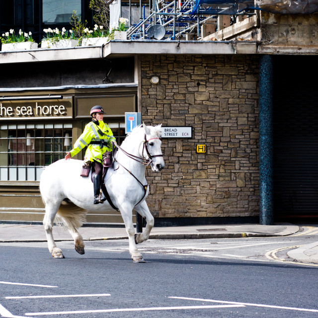 """London Policewoman On Horse"" stock image"