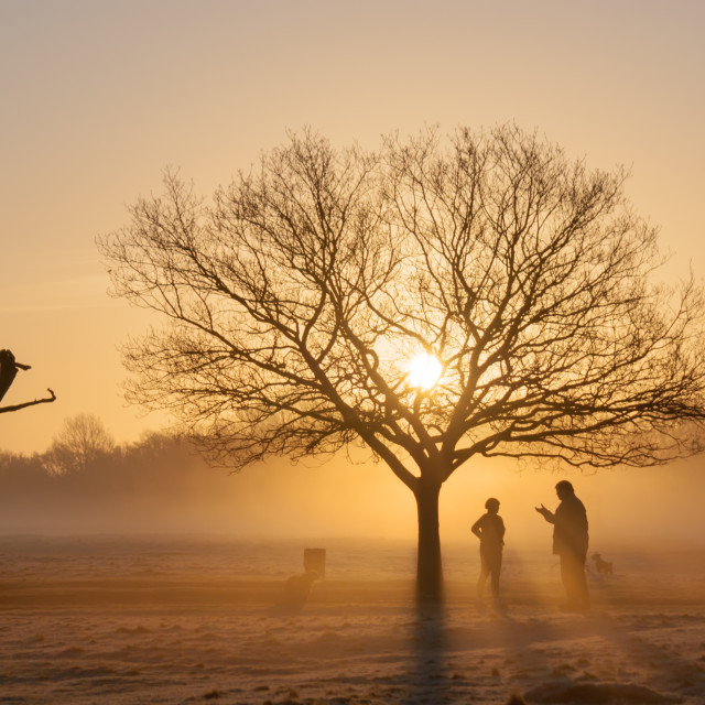 """Morning Walk"" stock image"