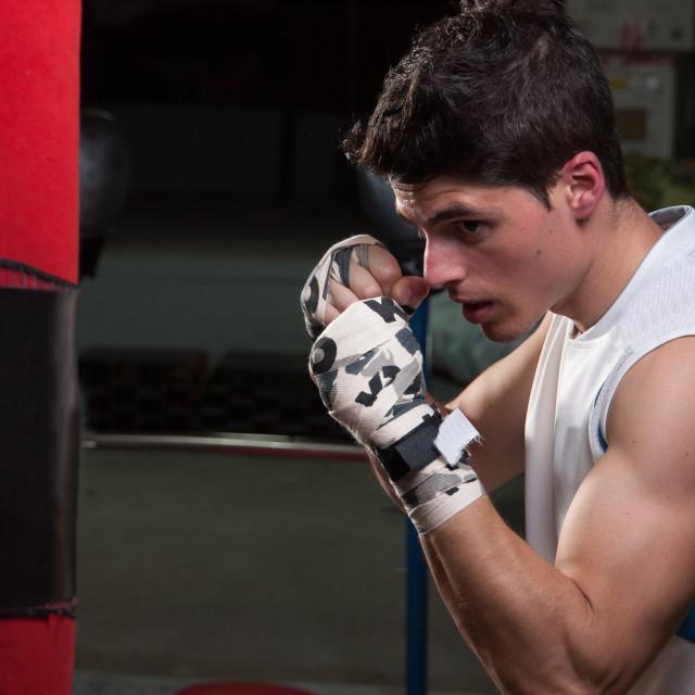 """Caucasian boxer man"" stock image"