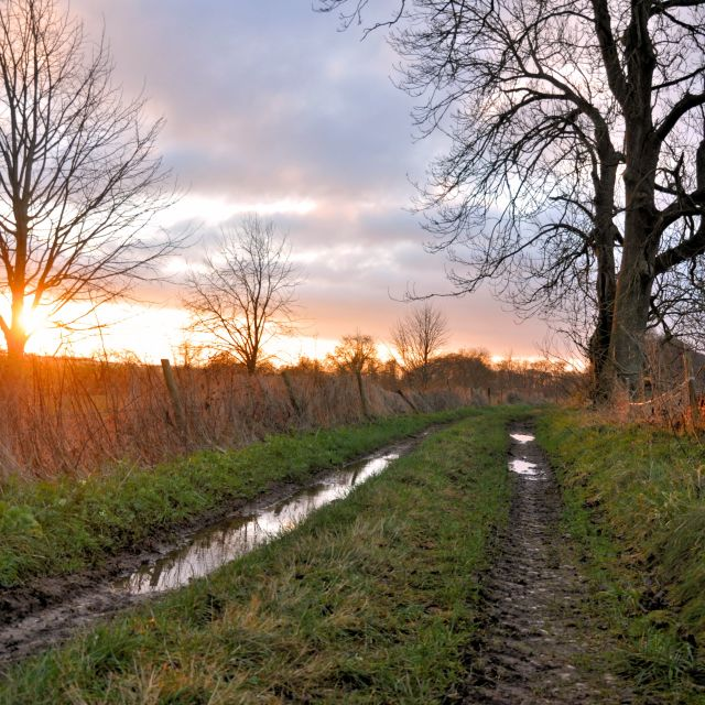 """Muddy lane sunrise"" stock image"