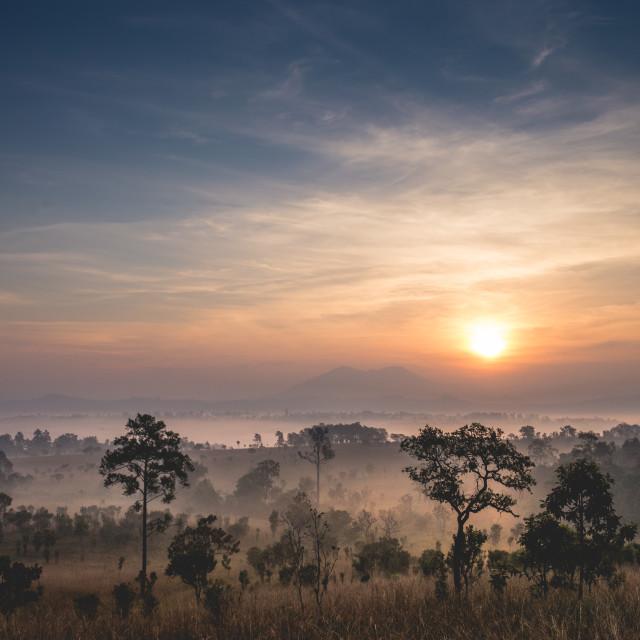 """Sunrise in TungSalangLuang National Park"" stock image"