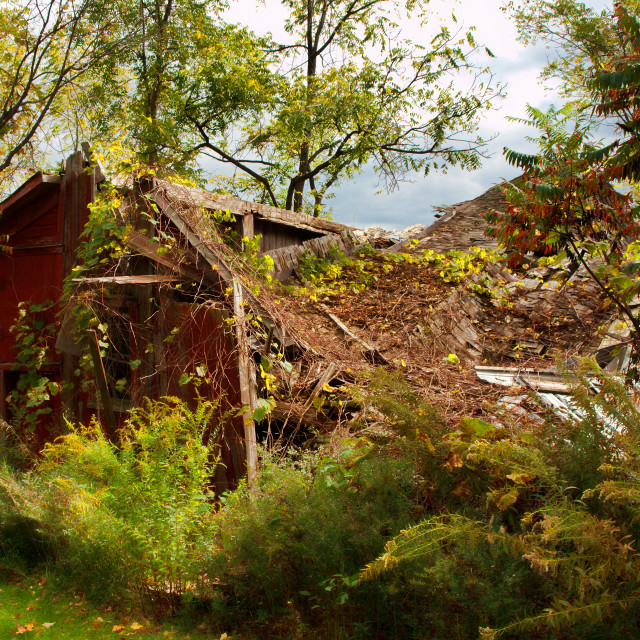 """collapsed barn"" stock image"