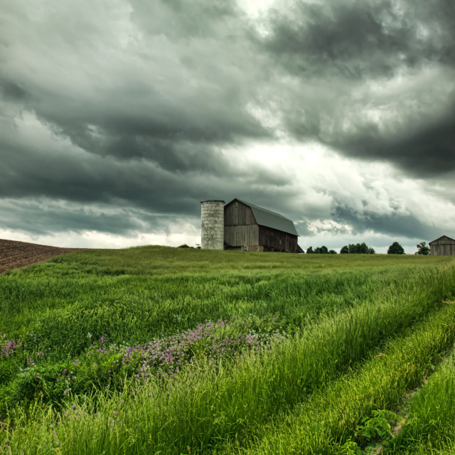 """""""barn and stormy sky"""" stock image"""