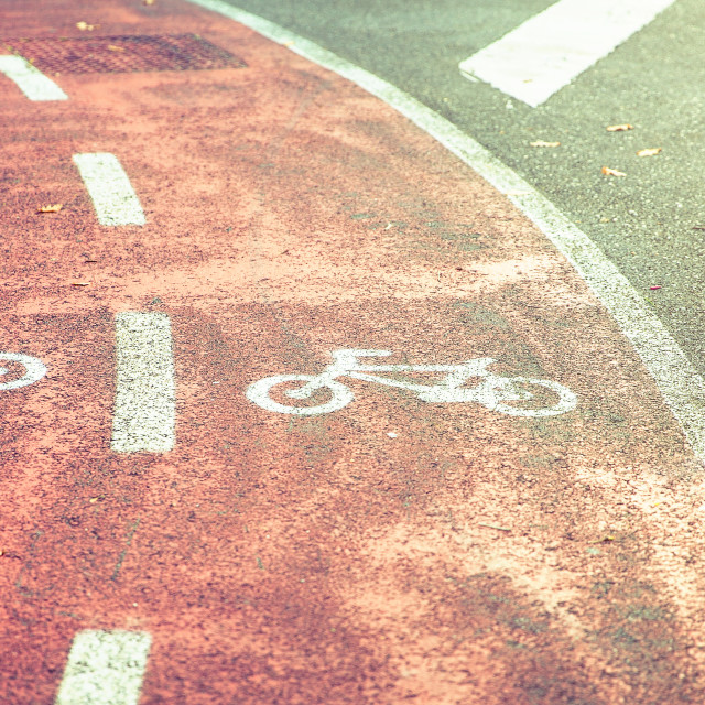 """Bicycle road symbol on bike lane with autumn leaves"" stock image"