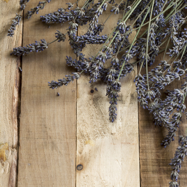 """""""Lavender on rustic wooden background"""" stock image"""