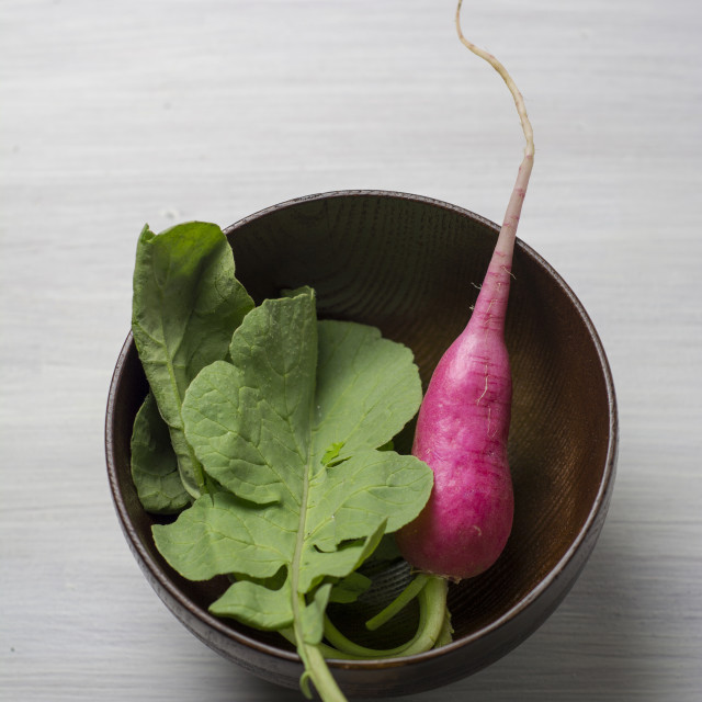"""Fresh radish en bowl, on white wooden table"" stock image"