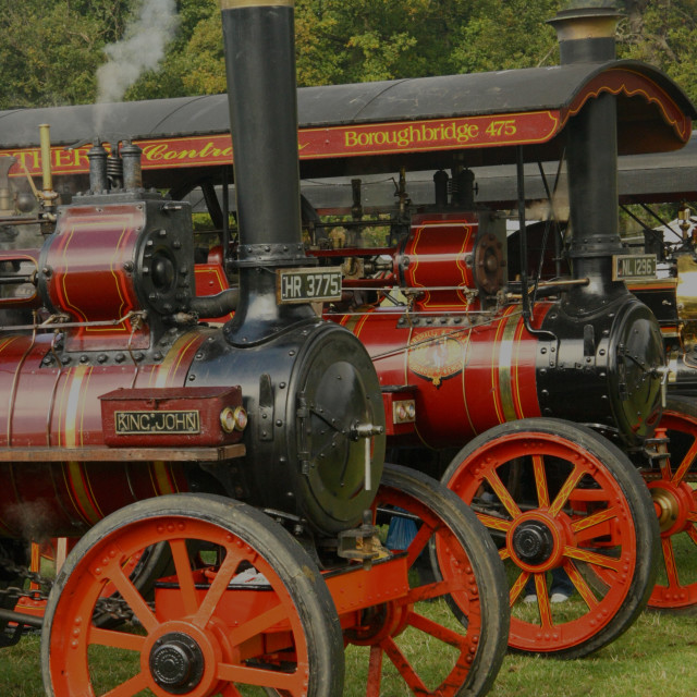 """""""Steam Traction Engines"""" stock image"""