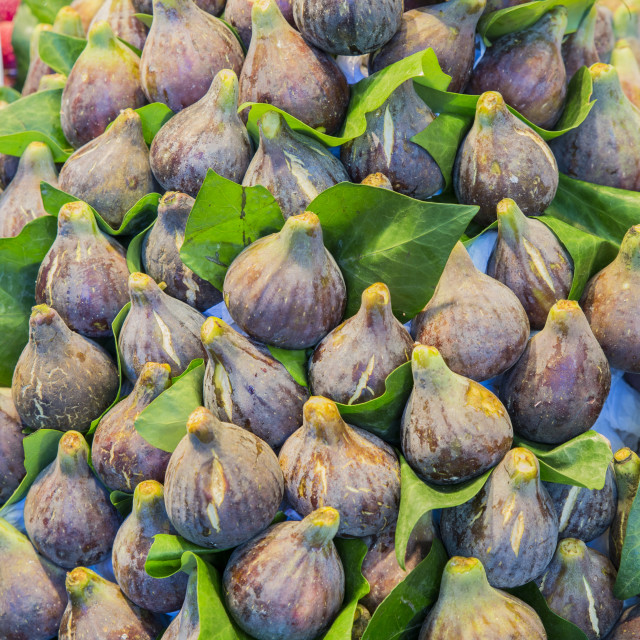 """""""pile of figs"""" stock image"""