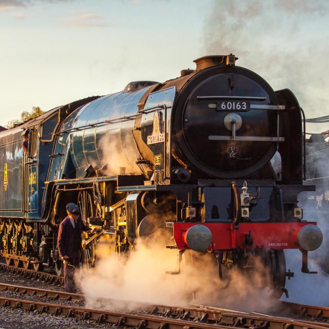 """""""LNER A1 60163 Tornado"""" stock image"""