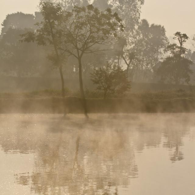 """""""Lakeside in nepali Terai"""" stock image"""