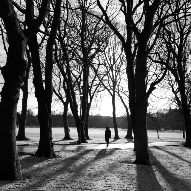 """The Meadows in winter"" stock image"