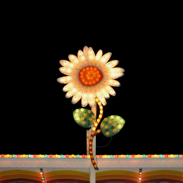 """electric flower flashing lights"" stock image"