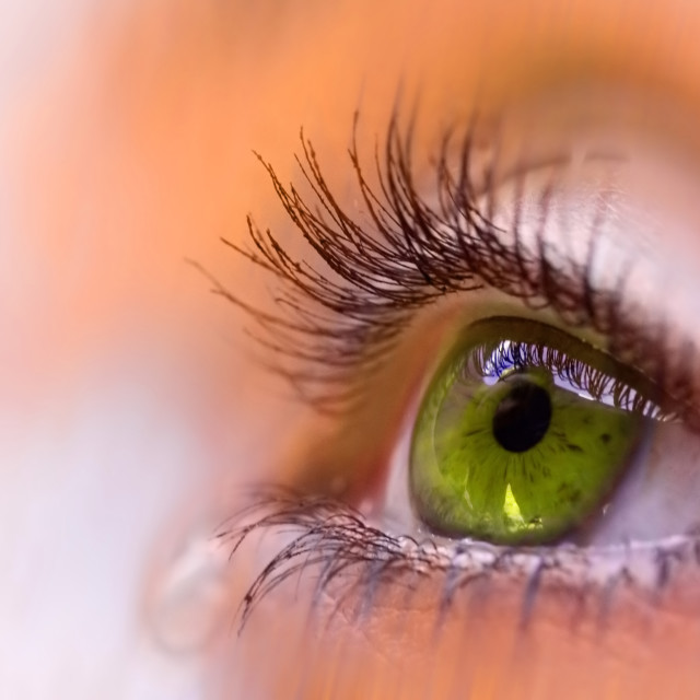 """green vision"" stock image"