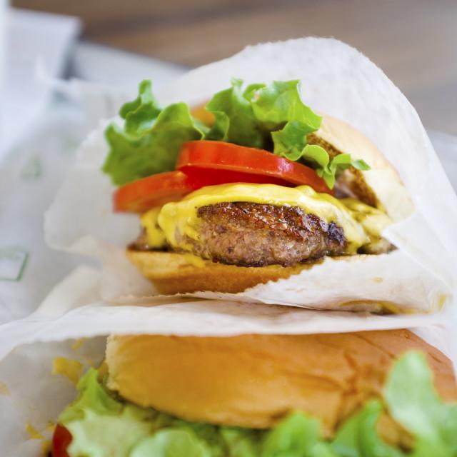 """Shack Burger"" stock image"