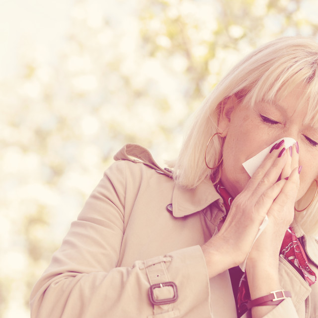 """Senior Woman Allergy Pollen"" stock image"