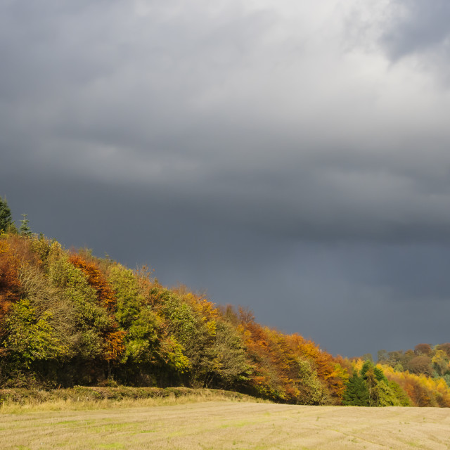 """Autumnal Storm Approaches"" stock image"
