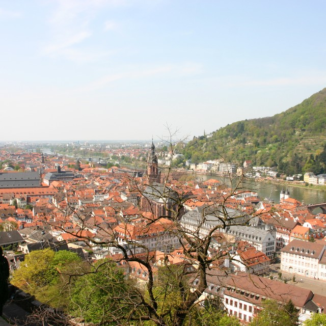 """The rooftops of Heidelberg"" stock image"