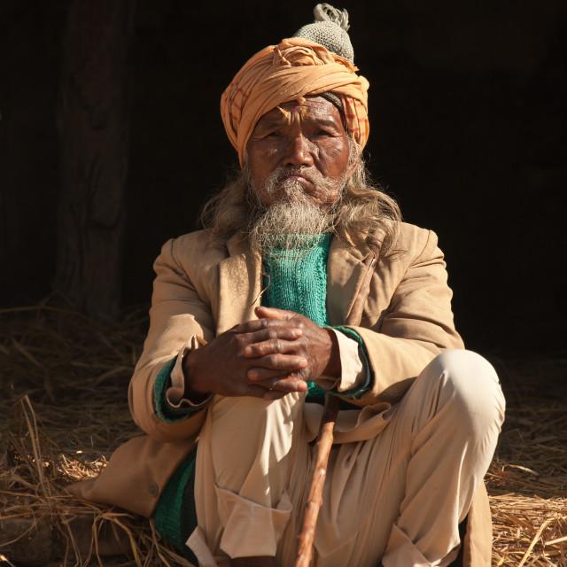 """Old brahman man in Nepal"" stock image"