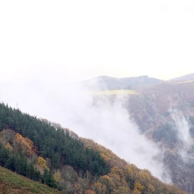 """Niebla en la montaña"" stock image"