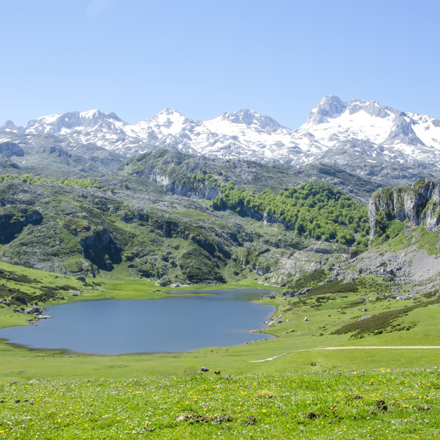 """Lakes of Covadonga"" stock image"