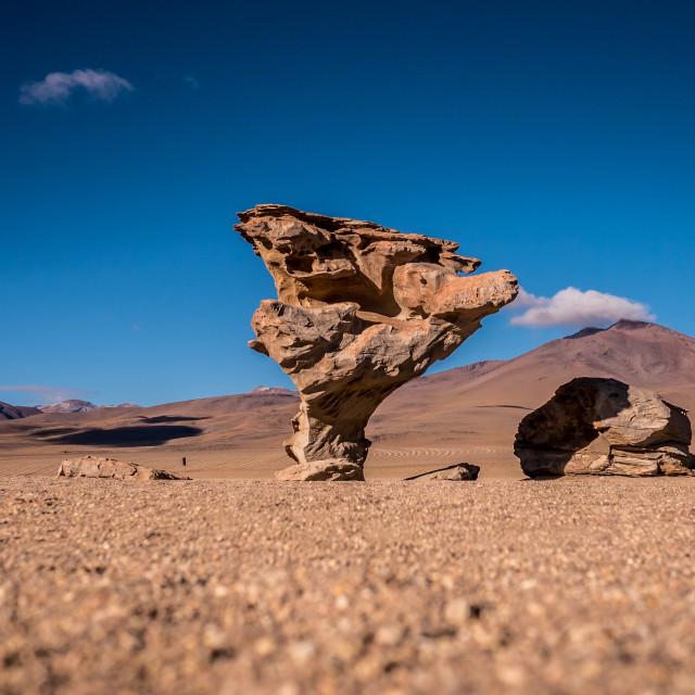 """The Stone Tree (Arbol de Piedra) in the Bolivian Desert"" stock image"
