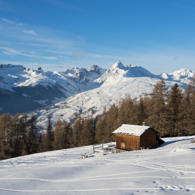 """Powder Snow in La Plagne"" stock image"