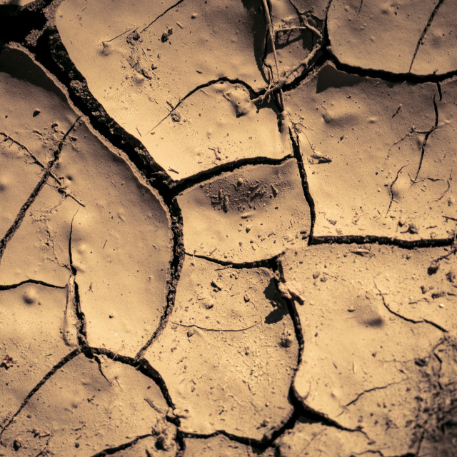 """""""Cracks in the earth (dry"""" stock image"""