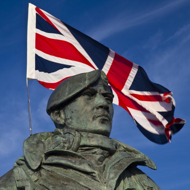 """British Marine Soldier"" stock image"