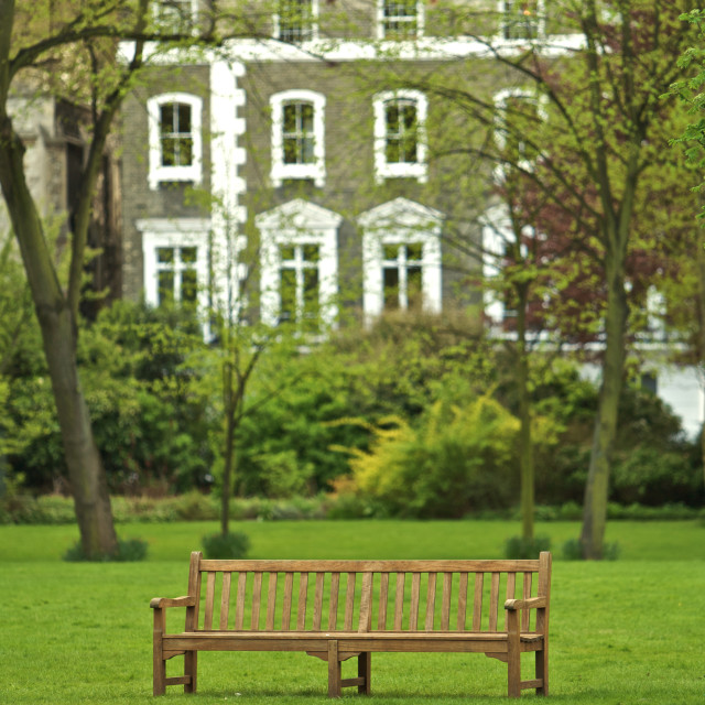 """A Wooden Bench in a Park"" stock image"
