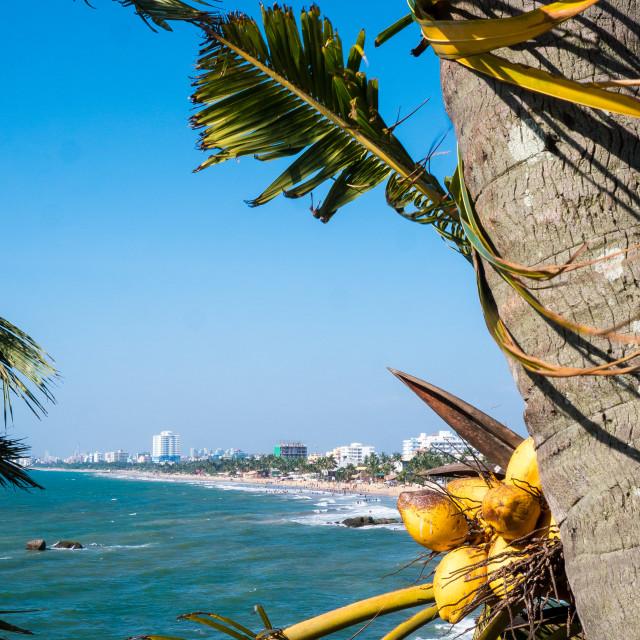 """""""Sri Lanka's capital coastal city of Columbo"""" stock image"""