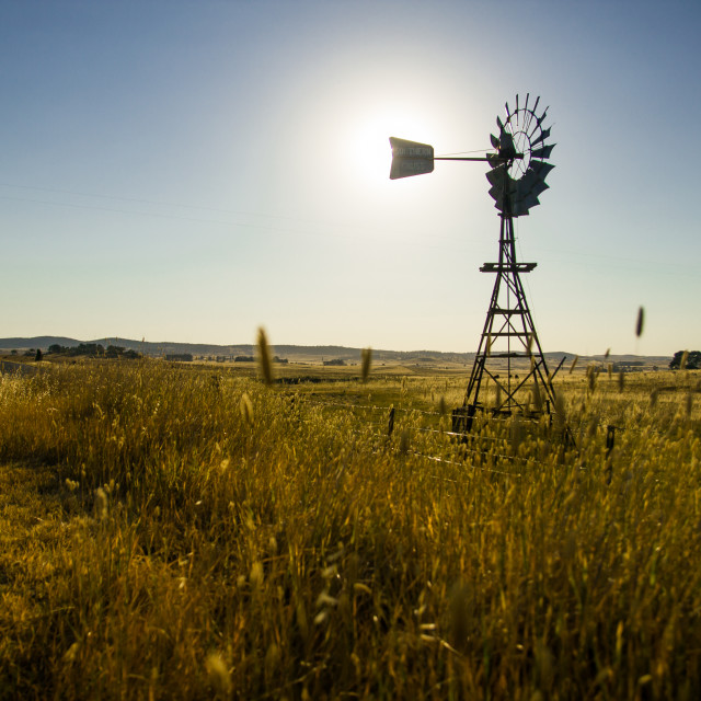 """""""Windmill silouhetted in rural wheat field"""" stock image"""