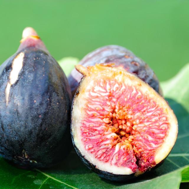 """""""Three Figs on fig leaf"""" stock image"""