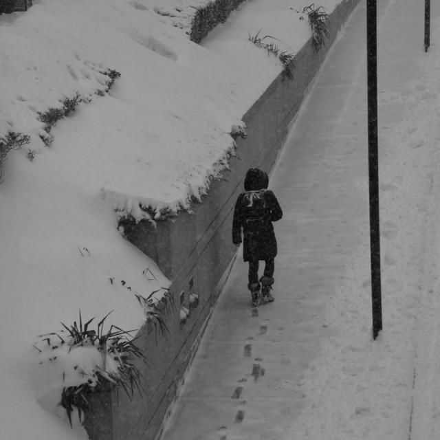 """Boston snow walking"" stock image"