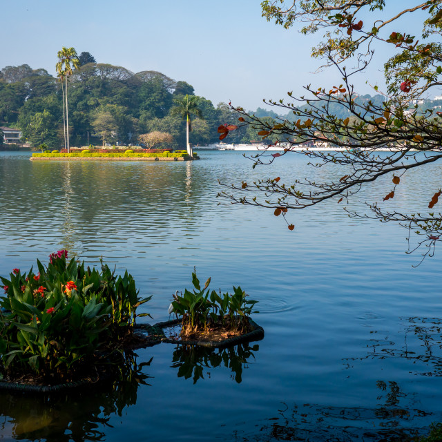 """""""Lake in Kandy, Sri Lanka"""" stock image"""