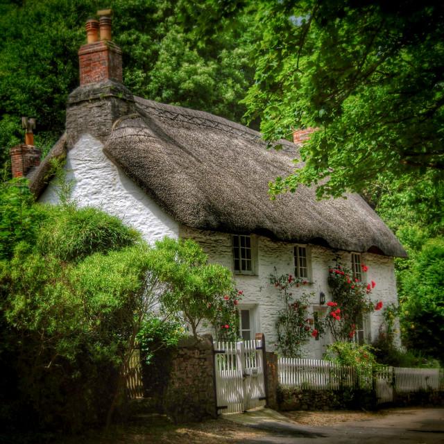 """""""English Cottage"""" stock image"""