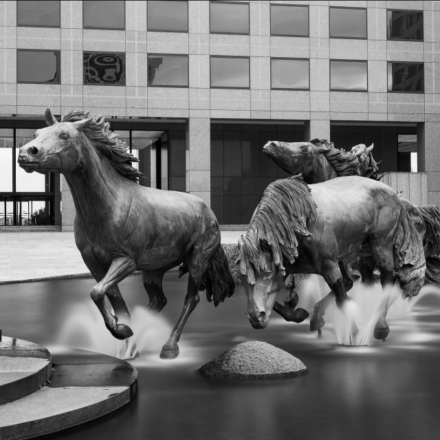 """Mustangs of Las Colinas"" stock image"