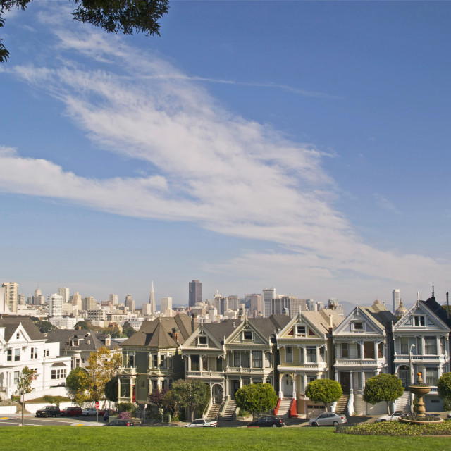 """The Painted Ladies"" stock image"