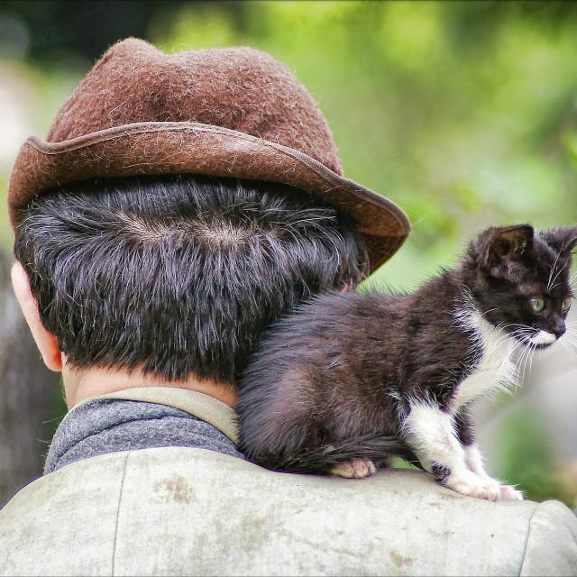"""Istanbul Cat Man"" stock image"