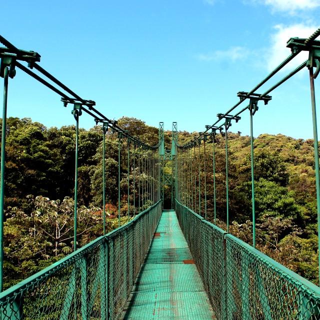 """""""Hanging bridges"""" stock image"""