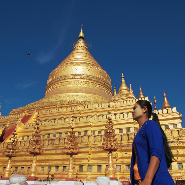 """Shwezigon Pagoda"" stock image"