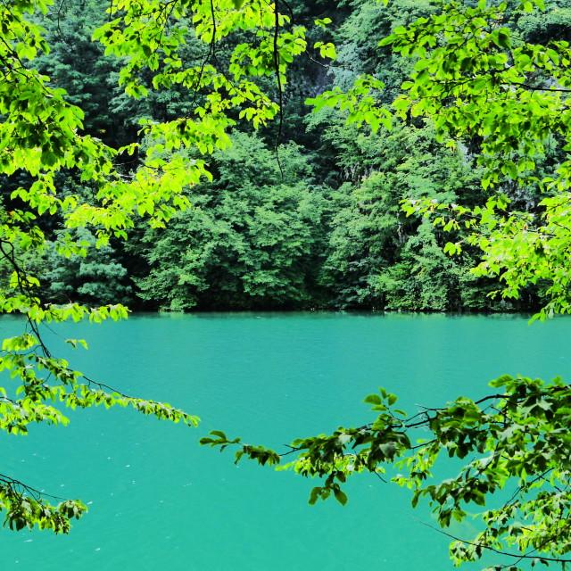 """""""Plitvice Lake"""" stock image"""
