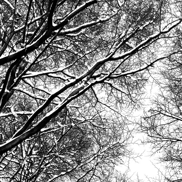 """Winter 13"" stock image"