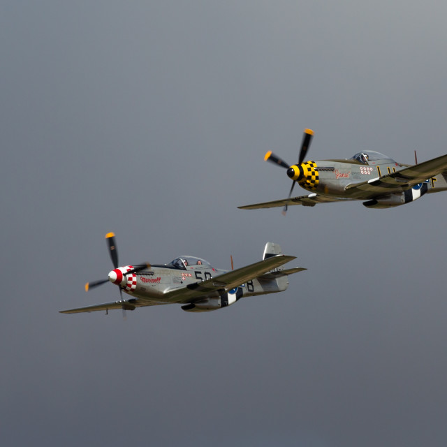 """Twin P51D Mustangs"" stock image"