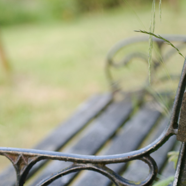 """A lonely wooden and wrought iron bench"" stock image"