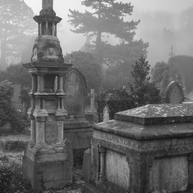 """Arnos Vale Cemetery"" stock image"