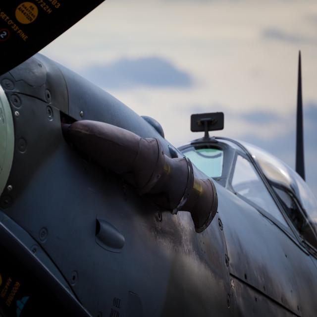 """Spitfire"" stock image"