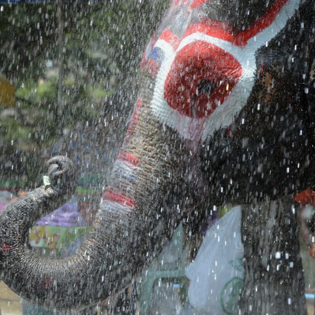 """ASIA THAILAND AYUTTHAYA SONGKRAN FESTIVAL"" stock image"