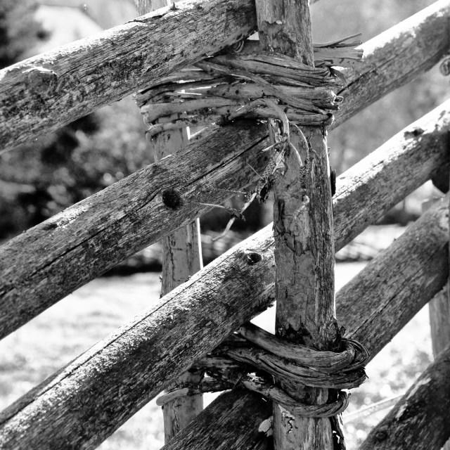 """""""Roundpole Fence"""" stock image"""