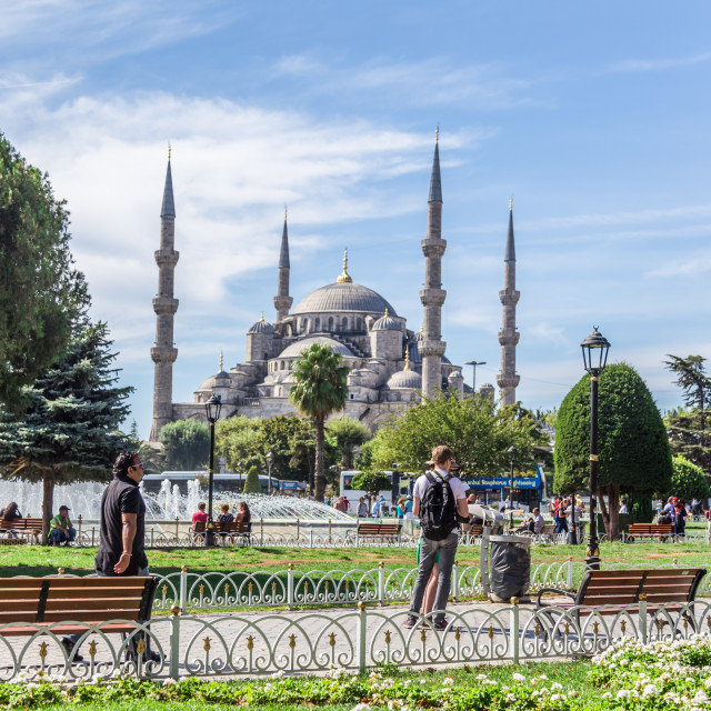 """""""Blue Mosque, Istanbul"""" stock image"""